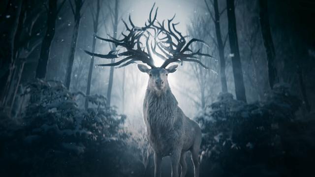 tenebre e ossa cervo